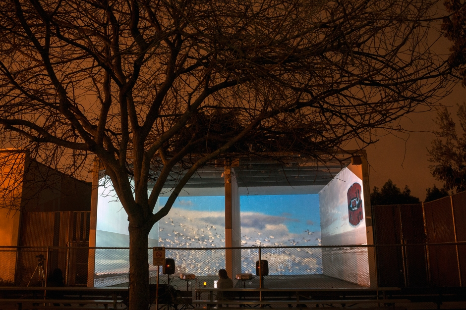 Bird Migration Flush_ video mapped onto _Urban Handball Courts_IMG_7884